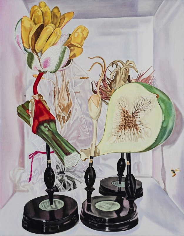 Dena Kahan, Still life with fig and wasp, 66x56cm