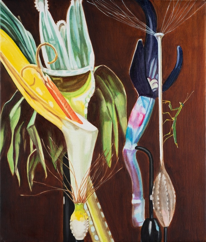 Dena Kahan, Still life with praying mantis