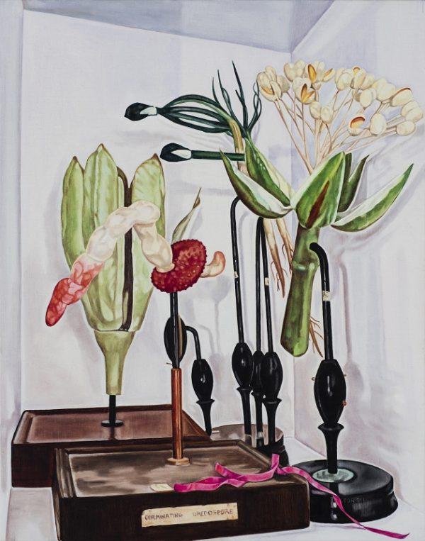 Dena Kahan, Still life with ribbon and ladybird, 66x56cm