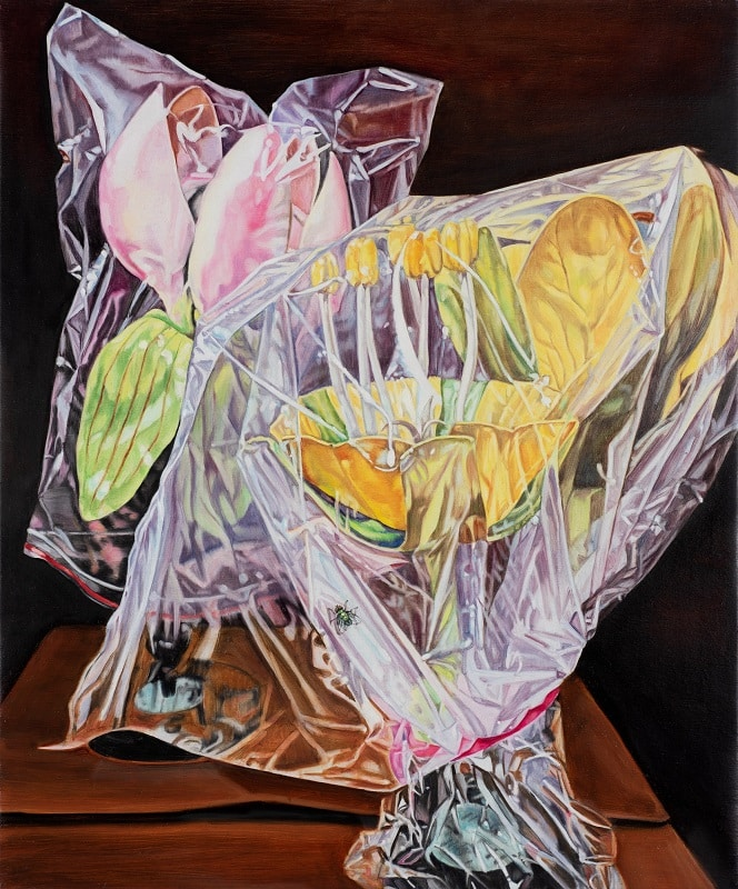 Dena Kahan, Wrapped still life with fly