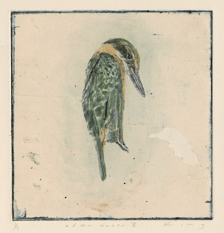 Martin King, Kingfisher, hand-coloured etching