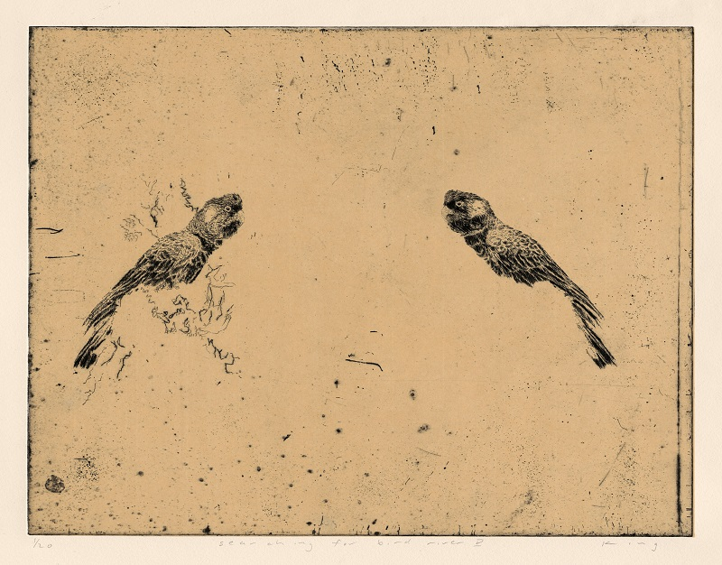 Martin King, Searching for Bird River v, etching, 30x39cm