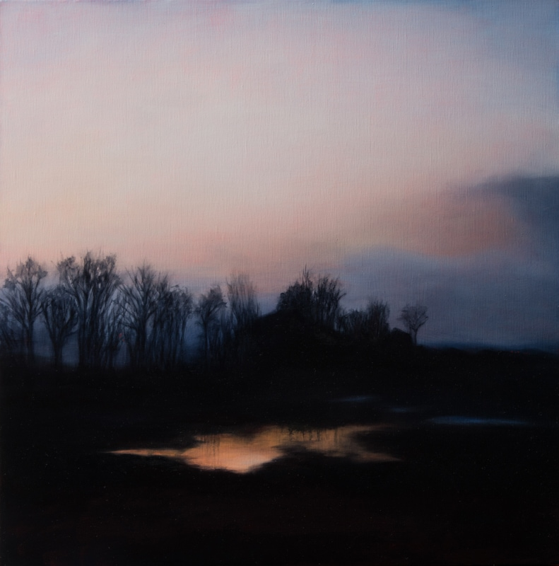 Kirrily Hammond, Rotselaar pond 2017, oil on linen, 46x46cm