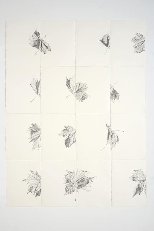 Andrew Seward, Four Leaves