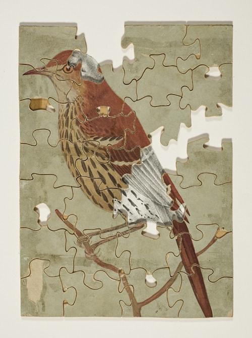 Andrew Seward, Jigsaw