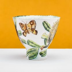 Fiona Hiscock, Banksia Serrata Bowl With Bogong Moth, 2015, 21x24x24cm