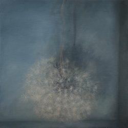 Kirrily Hammond, Dandelion V, 2010