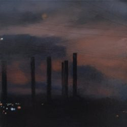 Kirrily Hammond, Gippsland Twilight 55, 2011