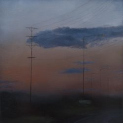 Kirrily Hammond, Gippsland Twilight 56, 2011
