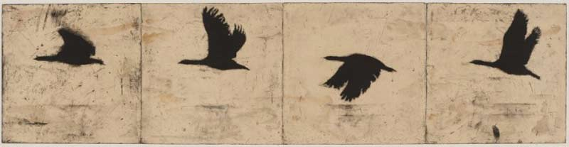 Martin King, Overflow, Etching, Chine Colle And Spitbiting On Four Plates, 45x180cm (editioned)