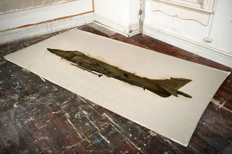 Harrier Jump Jet, 2011, oil and graphite on linen, 200x400cm
