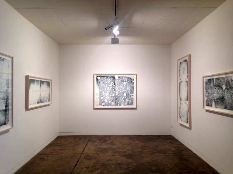 Ted May's exhibition, Wundergarten, installed at Gallerysmith